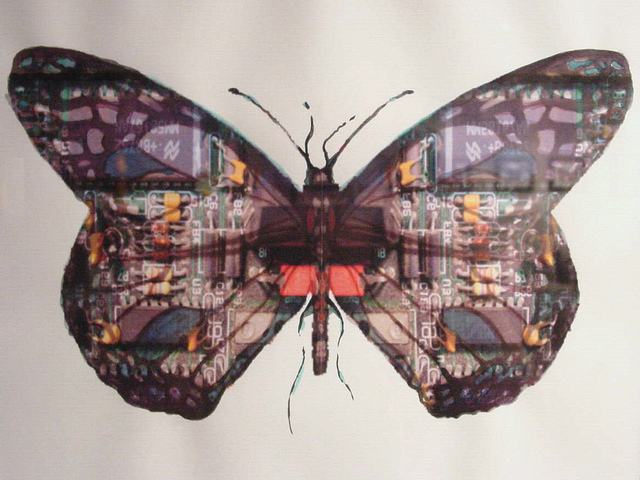 circuit_board_butterfly